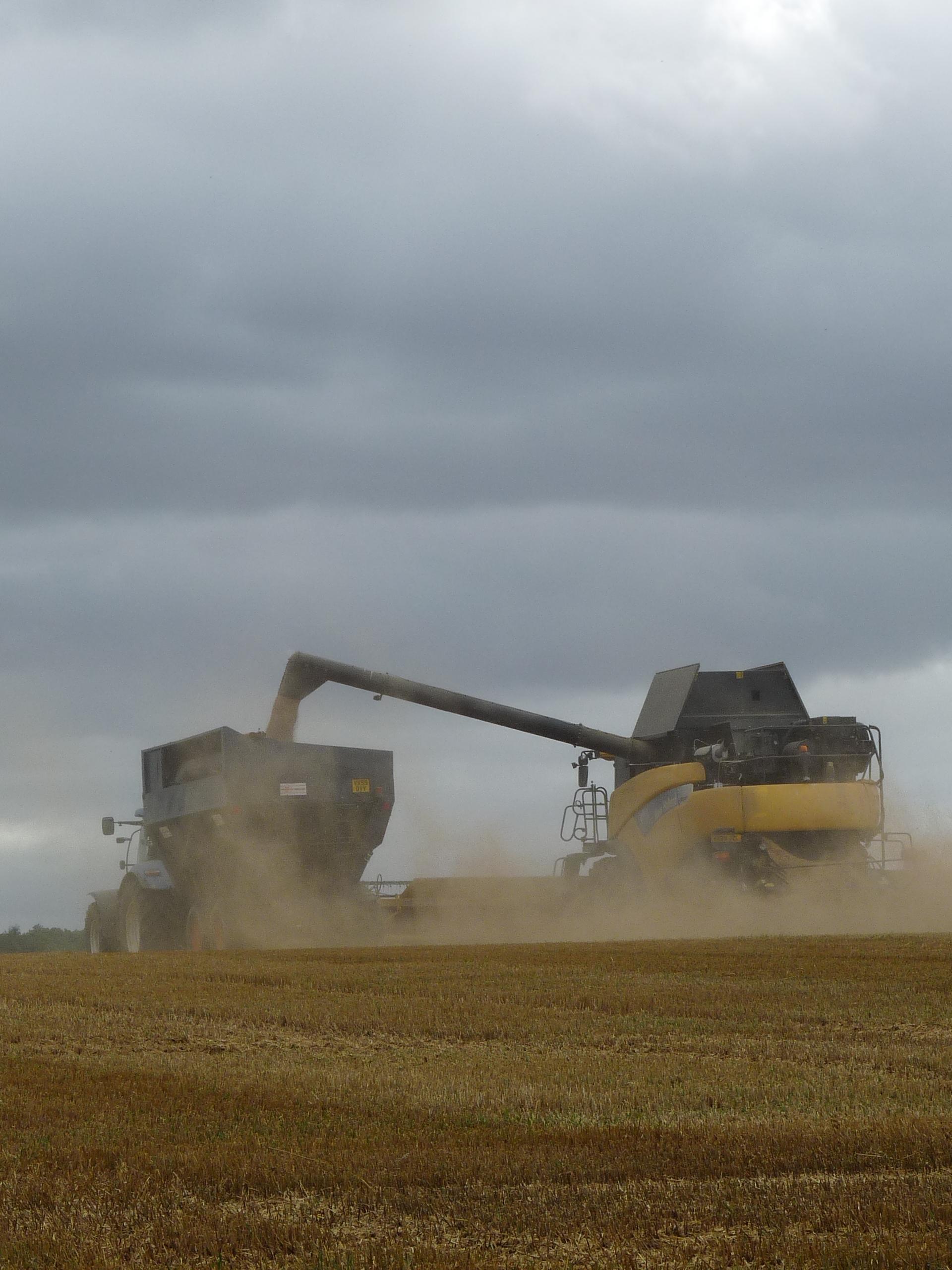 Harvest in Leek Wootton